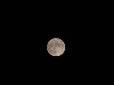 moon04282010.JPG
