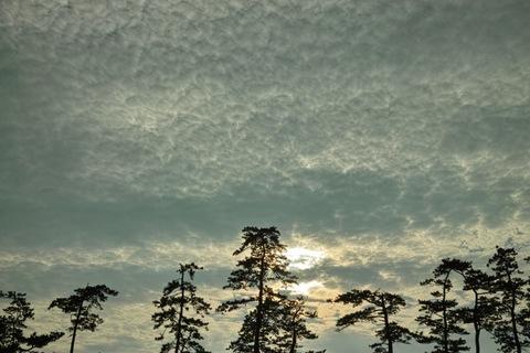 Cloud08052013dp2m01s.jpg
