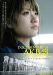 Documentary_of_AKB48_No_Flower_without_Rain.jpg