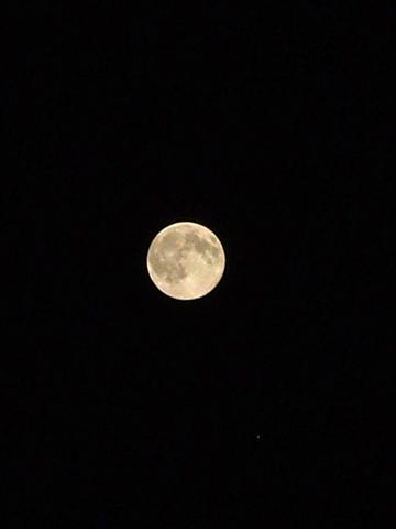 Full-moon09232010.JPG
