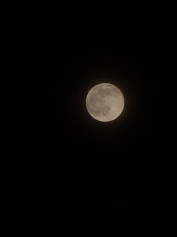 Full-moon12022009p2.JPG