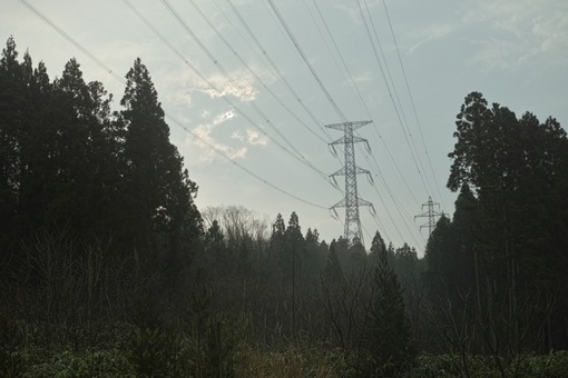 Landscape02252014dp2m03s.jpg