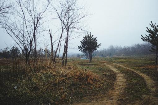 Landscape02272014dp2m01vsco_LV1.JPG
