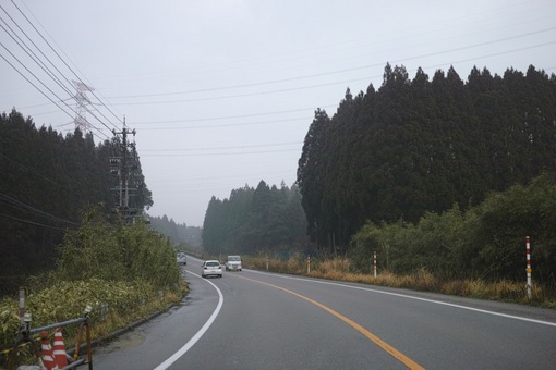 Landscape02282014dp2m06s.jpg