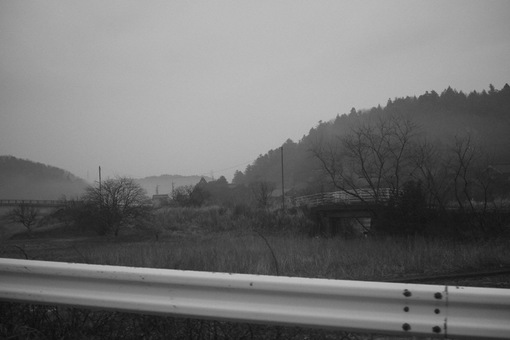 Landscape03182014dp2m03.jpg