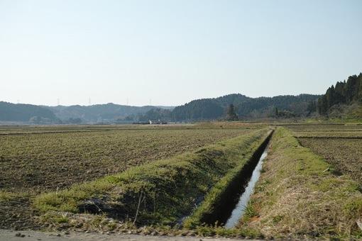 Landscape04112014dp2m05s.jpg