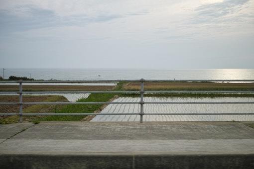 Landscape05142014dp2m02s.jpg