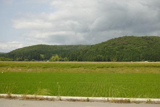 Landscape06092014dp2m03.jpg