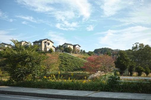 Landscape10242014dp2m02s.jpg