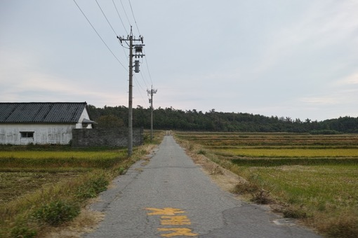 Landscape10312014dp2m05s.jpg