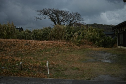 Landscape12032014dp2m01s.jpg