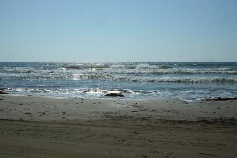 Sea04282013dp2m.jpg