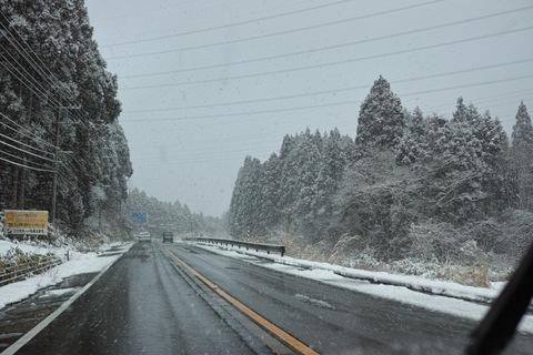 Snowing02252013dp2m.jpg