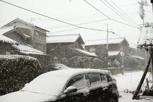 Snowing03102014dp2m02.jpg