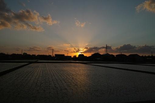 Sunset05032014dp1m01.jpg