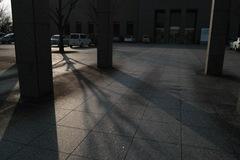 Tonami_Museum02162014dp1m04s.jpg