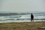 Walk_on_the_beach03142010.jpg