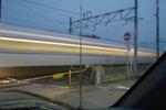 crossing07072008d.jpg