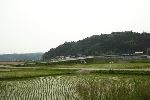 landscape05272013dp2m01.jpg