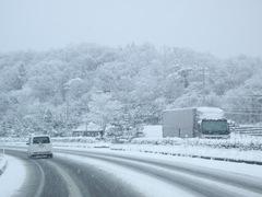 snow02152008.JPG