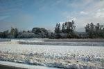 snowing03112009-2.jpg